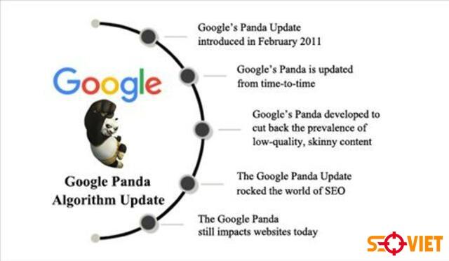 thuật toán google panda 1