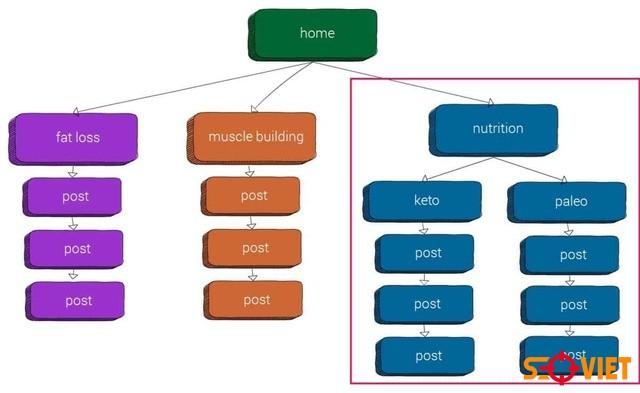 cấu trúc Website phẳng